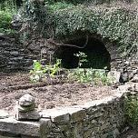 Le jardin des figuiers